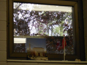 the little teeny window we get to stare out of for 8 hours a day :)
